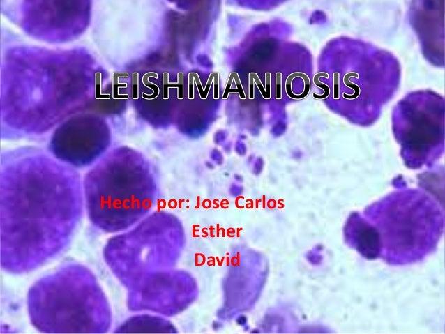Hecho por: Jose Carlos Esther David