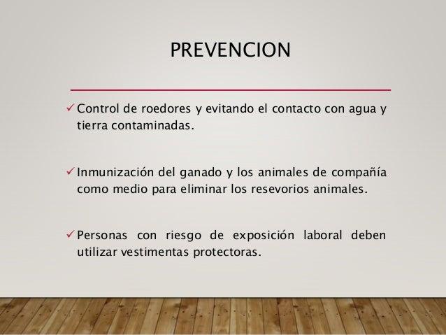 Las condiciones de habitabilidad son muy importantes en la cadena de transmisión. La incidencia y prevalencia de la infecc...