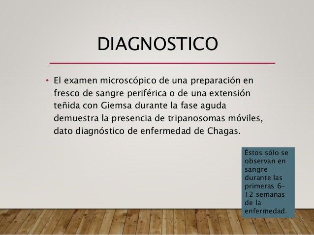 Leishmaniasis,leptospirosis y chagas