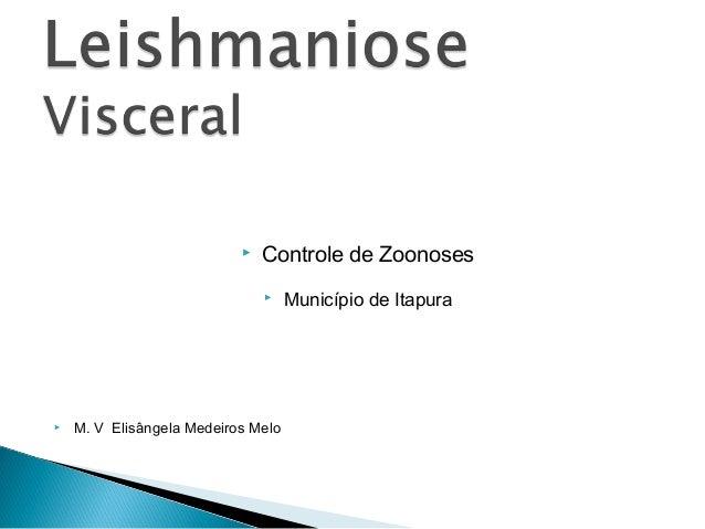    Controle de Zoonoses                                   Município de Itapura   M. V Elisângela Medeiros Melo