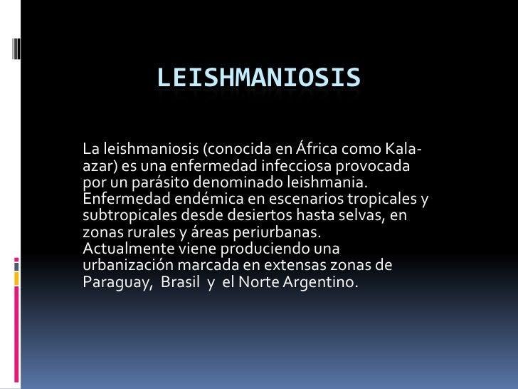 Leishmaniosis  Slide 3