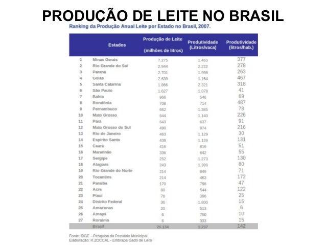 PRODUÇÃO DE LEITE NO BRASIL