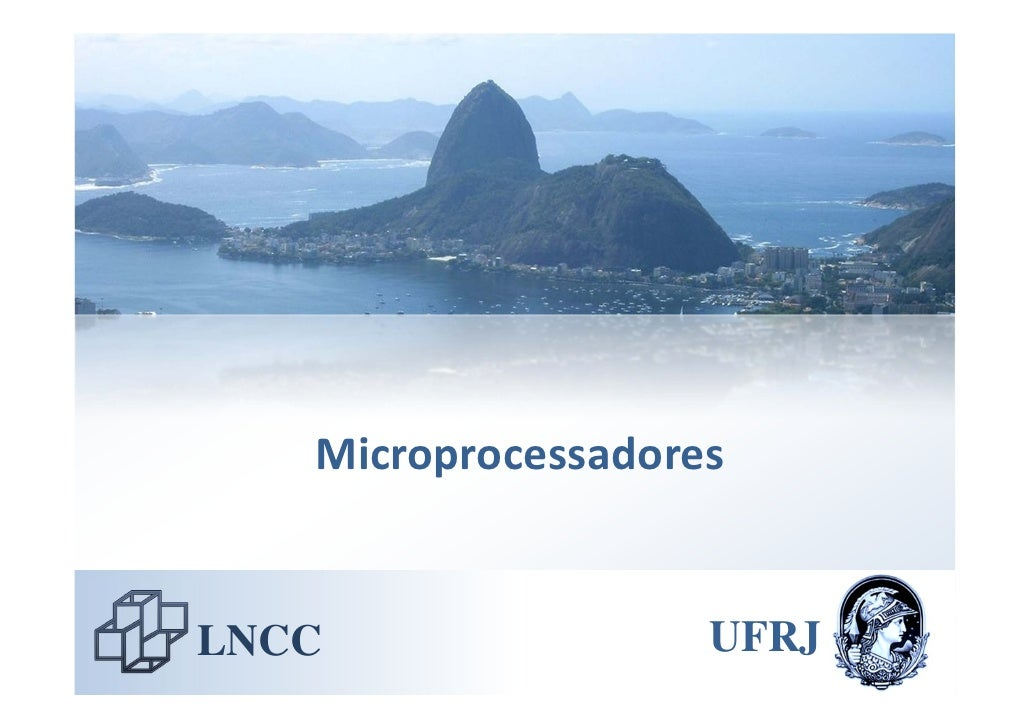 Microprocessadores   LNCC                UFRJ
