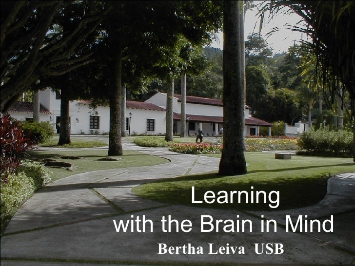 Learning  with the Brain in Mind Bertha Leiva  USB