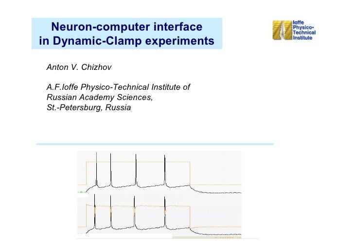 Neuron-computer interface in Dynamic-Clamp experiments   Anton V. Chizhov   A.F.Ioffe Physico-Technical Institute of  Russ...
