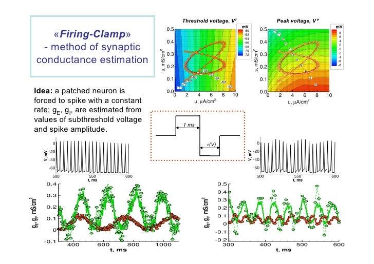 Role of Neutrinos, Strings, Gravity