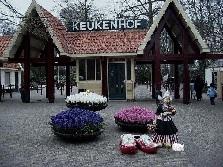 Bienvenue au KeukenhofIl n'existe aucun endroit au monde où le printemps se manifeste autant  dans toute sa splendeur, ses...