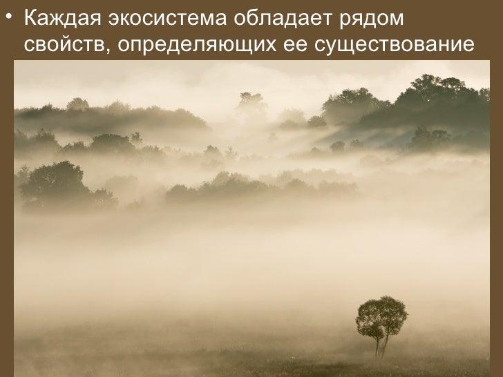 • Каждая экосистема обладает рядом  свойств, определяющих ее существование