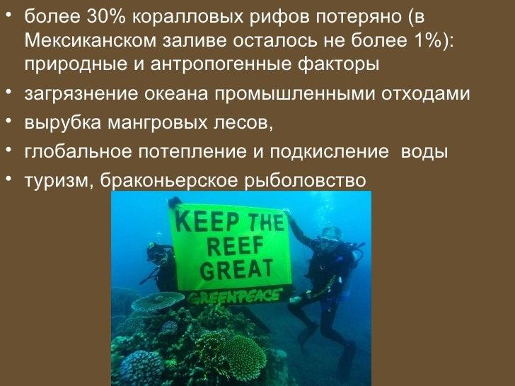 • более 30% коралловых рифов потеряно (в  Мексиканском заливе осталось не более 1%):  природные и антропогенные факторы• з...