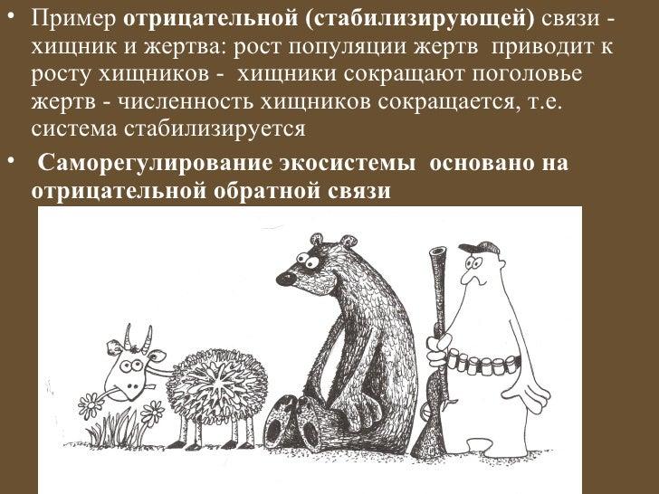 • Пример отрицательной (стабилизирующей) связи -  хищник и жертва: рост популяции жертв приводит к  росту хищников - хищни...