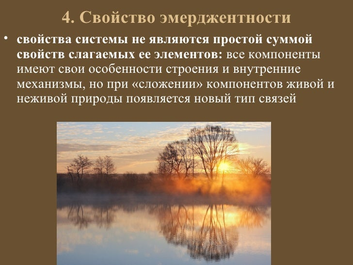 4. Свойство эмерджентности• свойства системы не являются простой суммой  свойств слагаемых ее элементов: все компоненты  и...