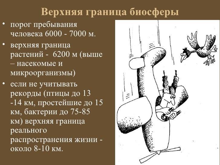 Верхняя граница биосферы• порог пребывания  человека 6000 - 7000 м.• верхняя граница  растений - 6200 м (выше  – насекомые...