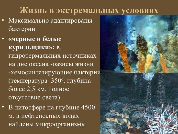 Жизнь в экстремальных условиях• Максимально адаптированы  бактерии• «черные и белые  курильщики»: в  гидротермальных источ...
