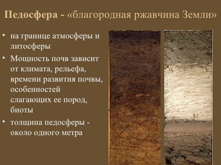 Педосфера - «благородная ржавчина Земли»• на границе атмосферы и  литосферы• Мощность почв зависит  от климата, рельефа,  ...