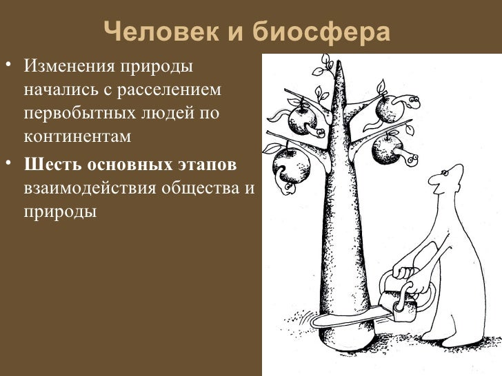 Человек и биосфера• Изменения природы  начались с расселением  первобытных людей по  континентам• Шесть основных этапов  в...