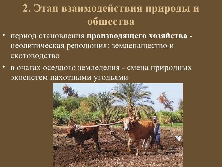 2. Этап взаимодействия природы и                 общества• период становления производящего хозяйства -  неолитическая рев...