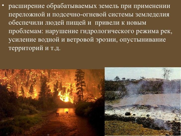 • расширение обрабатываемых земель при применении  переложной и подсечно-огневой системы земледелия  обеспечили людей пище...