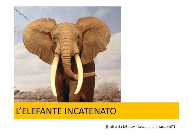 """L'ELEFANTE INCATENATO(tratto da J.Bucay """"Lascia che ti racconti"""")"""