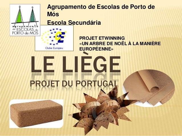 Agrupamento de Escolas de Porto de Mós Escola Secundária PROJET ETWINNING «UN ARBRE DE NOËL À LA MANIÈRE EUROPÉENNE»  LE L...