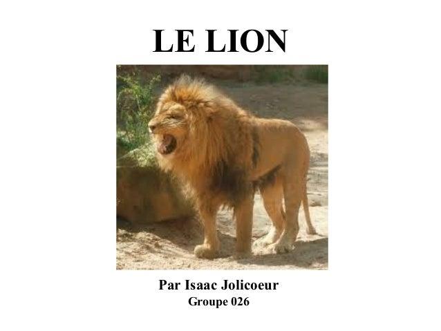 LE LION  Par Isaac Jolicoeur Groupe 026