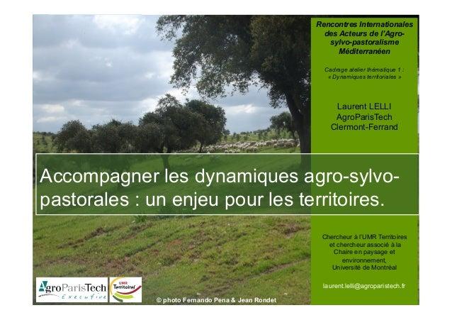Rencontres Internationales des Acteurs de l'Agro- sylvo-pastoralisme Méditerranéen Cadrage atelier thématique 1 : « Dynami...