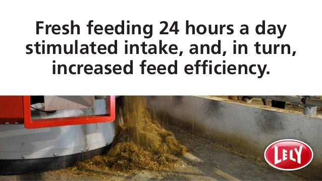 Fresh feeding 24 hours a day stimulated intake, and, in turn, increased feed efficiency.