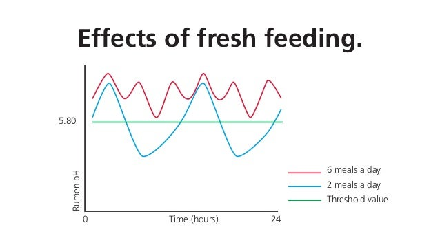 Effects of fresh feeding. 5.80 0 24Time (hours) RumenpH 6 meals a day 2 meals a day Threshold value