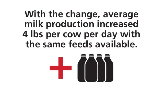 With the change, average milk production increased 4 lbs per cow per day with the same feeds available.