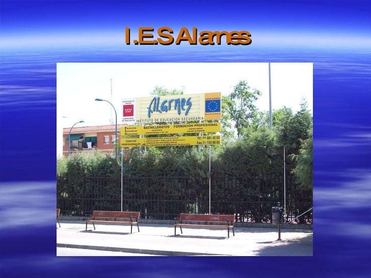 I.E.S Alarnes