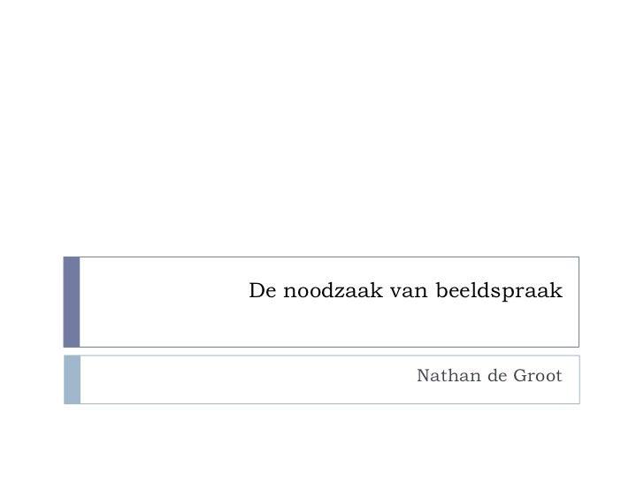 De noodzaak van beeldspraak              Nathan de Groot