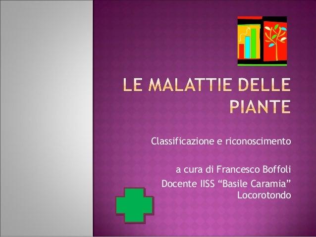 """Classificazione e riconoscimento a cura di Francesco Boffoli Docente IISS """"Basile Caramia"""" Locorotondo"""