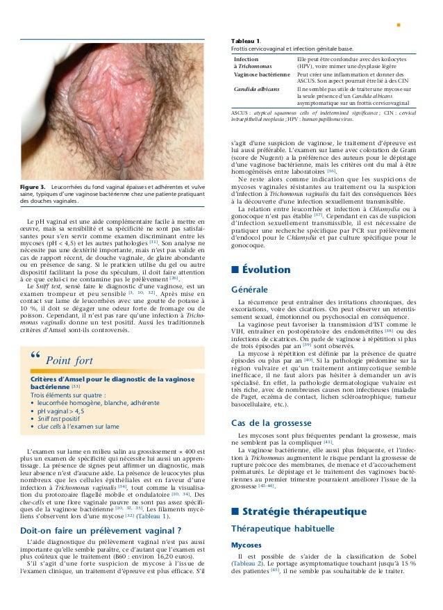 Le manuel du généraliste 2 gynécologie obstétrique