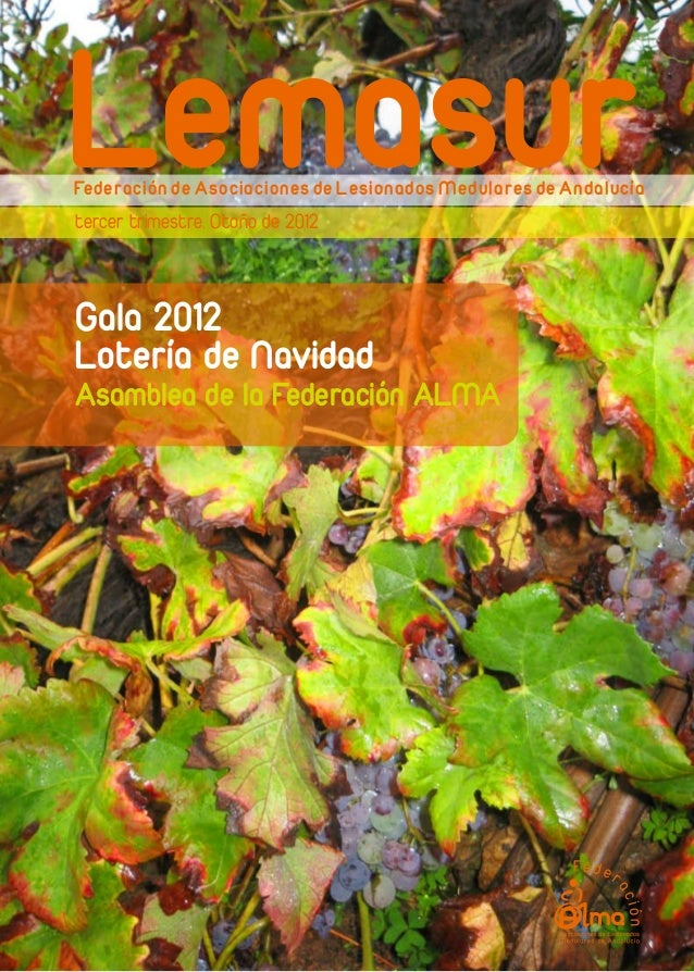 LemasurFederación de Asociaciones de Lesionados Medulares de Andalucíatercer trimestre. Otoño de 2012Gala 2012Lotería de N...