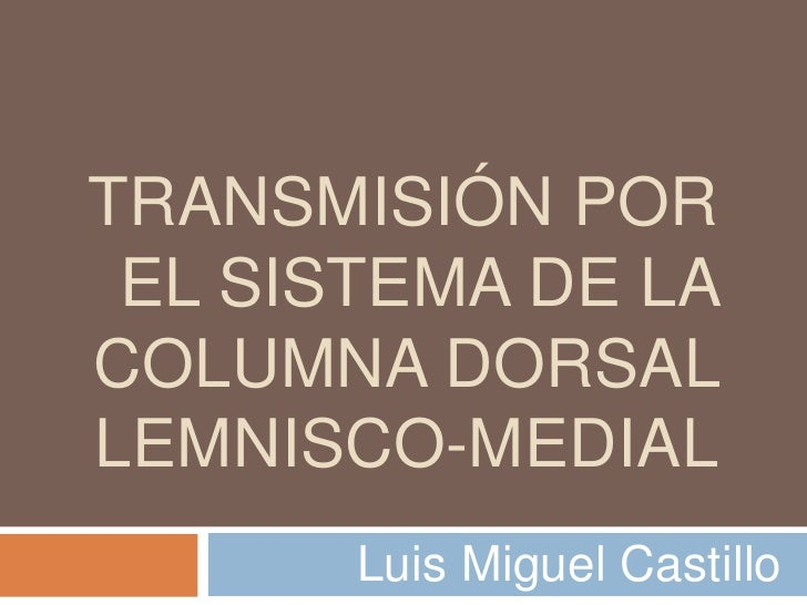 TRANSMISIÓN POR EL SISTEMA DE LACOLUMNA DORSALLEMNISCO-MEDIAL       Luis Miguel Castillo
