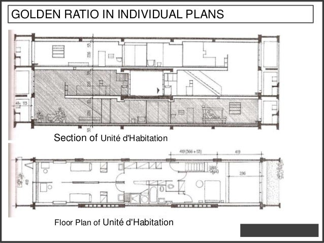 34. GOLDEN RATIO IN INDIVIDUAL PLANS Section Of Unité Du0027Habitation ...