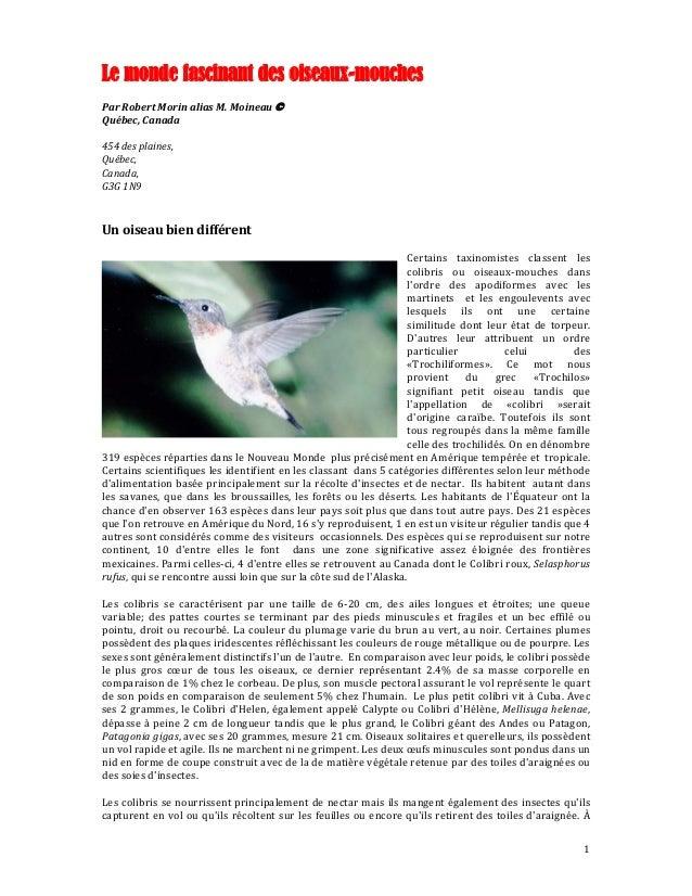 Le monde fascinant des oiseaux-mouches ParRobertMorinaliasM.Moineau© Québec,Canada  454desplaines, Québec, C...