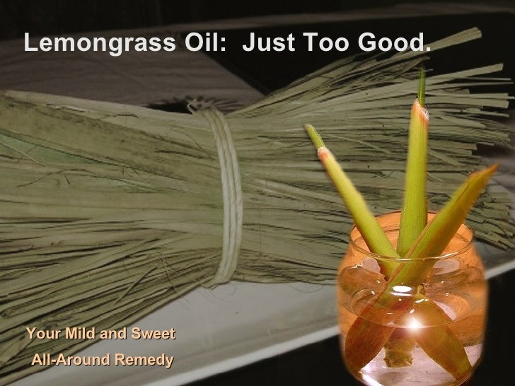Lemongrass Oil:  Just Too Good. Your Mild and Sweet  All-Around Remedy