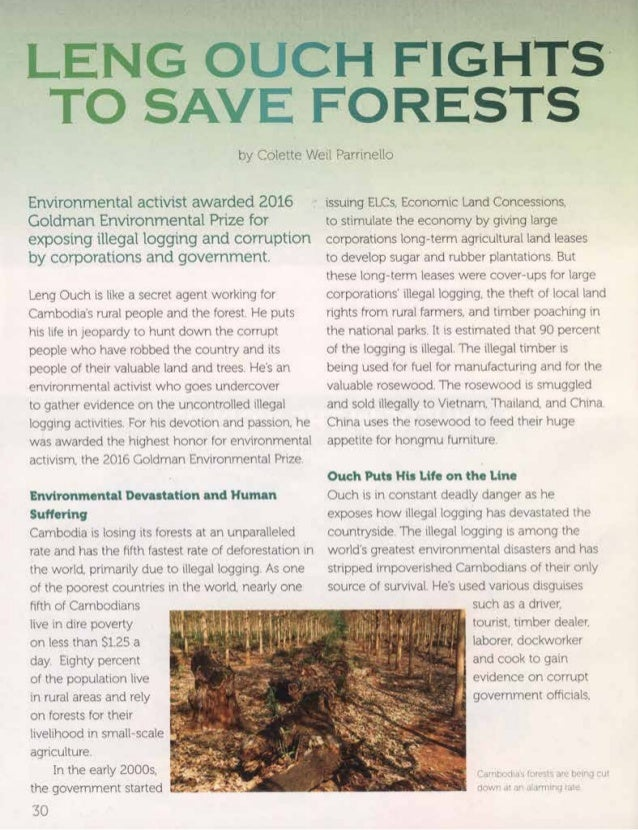 Leng Ouch Fights to Save Forests by Colette Weil Parrinello Cobblestone Publications