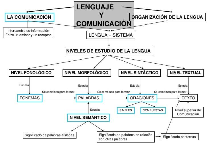 LENGUAJE LA COMUNICACIÓN                                      Y       ORGANIZACIÓN DE LA LENGUA                           ...