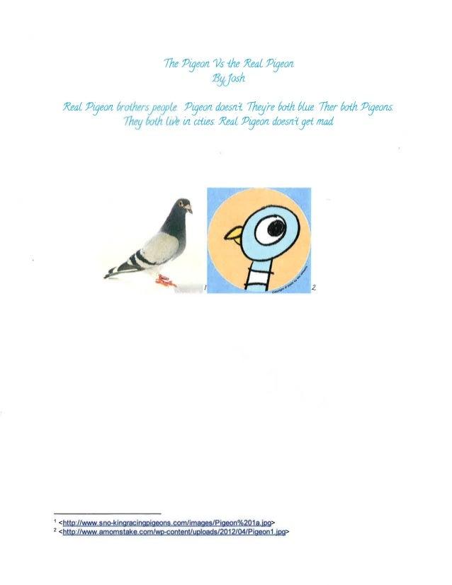 Lennon Pigeon Paragraphs