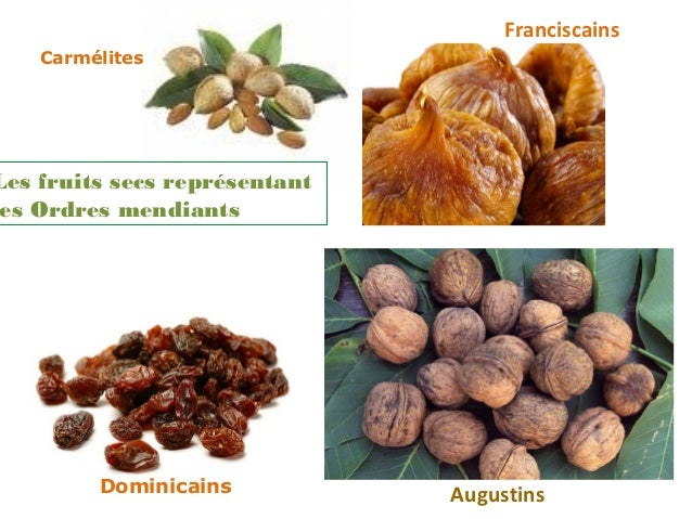 Franciscains    CarmélitesLes fruits secs représentant es Ordres mendiants         Dominicains           Augustins