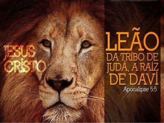 Ele é o Leão da tribo de Judá