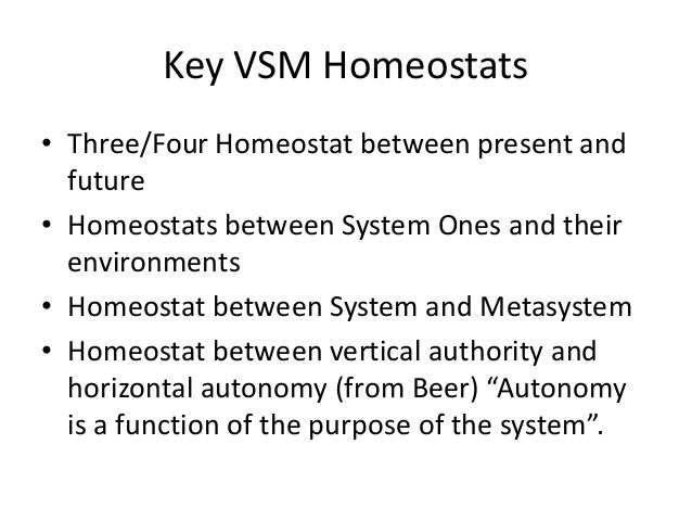 Key VSM Homeostats • Three/Four Homeostat between present and future • Homeostats between System Ones and their environmen...