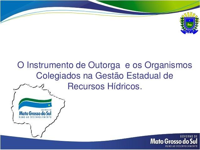 O Instrumento de Outorga e os Organismos    Colegiados na Gestão Estadual de           Recursos Hídricos.