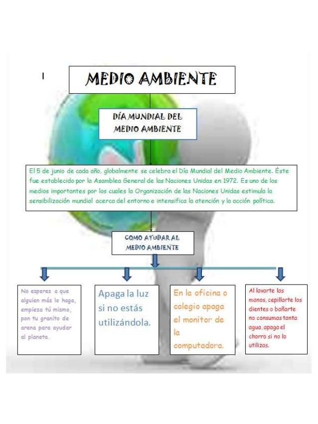 Diagrama sobre el cuidado del medio ambiente 2 - Como humidificar el ambiente ...