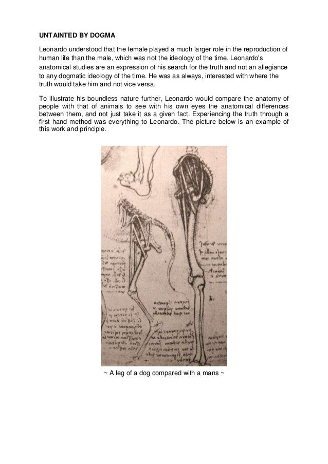 Anatomy by Leonardo Da Vinci