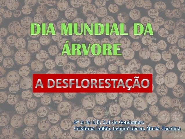 O que é a desflorestação?• A desflorestação é o abate de árvores para  aproveitar a área que elas ocupam para outros  fins...