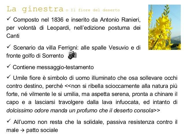 La ginestra o Il fiore del deserto  Composto nel 1836 e inserito da Antonio Ranieri, per volontà di Leopardi, nell'edizio...