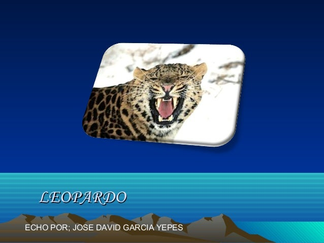 LEOPARDOECHO POR; JOSE DAVID GARCIA YEPES
