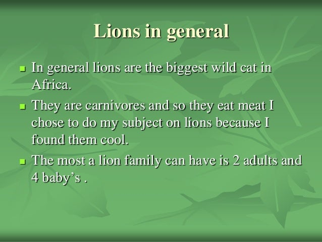 Lions in general In general lions are the biggest wild cat inAfrica. They are carnivores and so they eat meat Ichose to ...